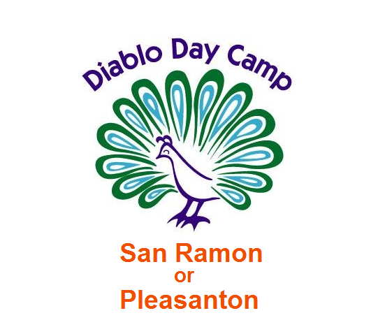 Download Registration Packet for DDC in San Ramon & Pleasanton